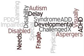 Special Needs word chart